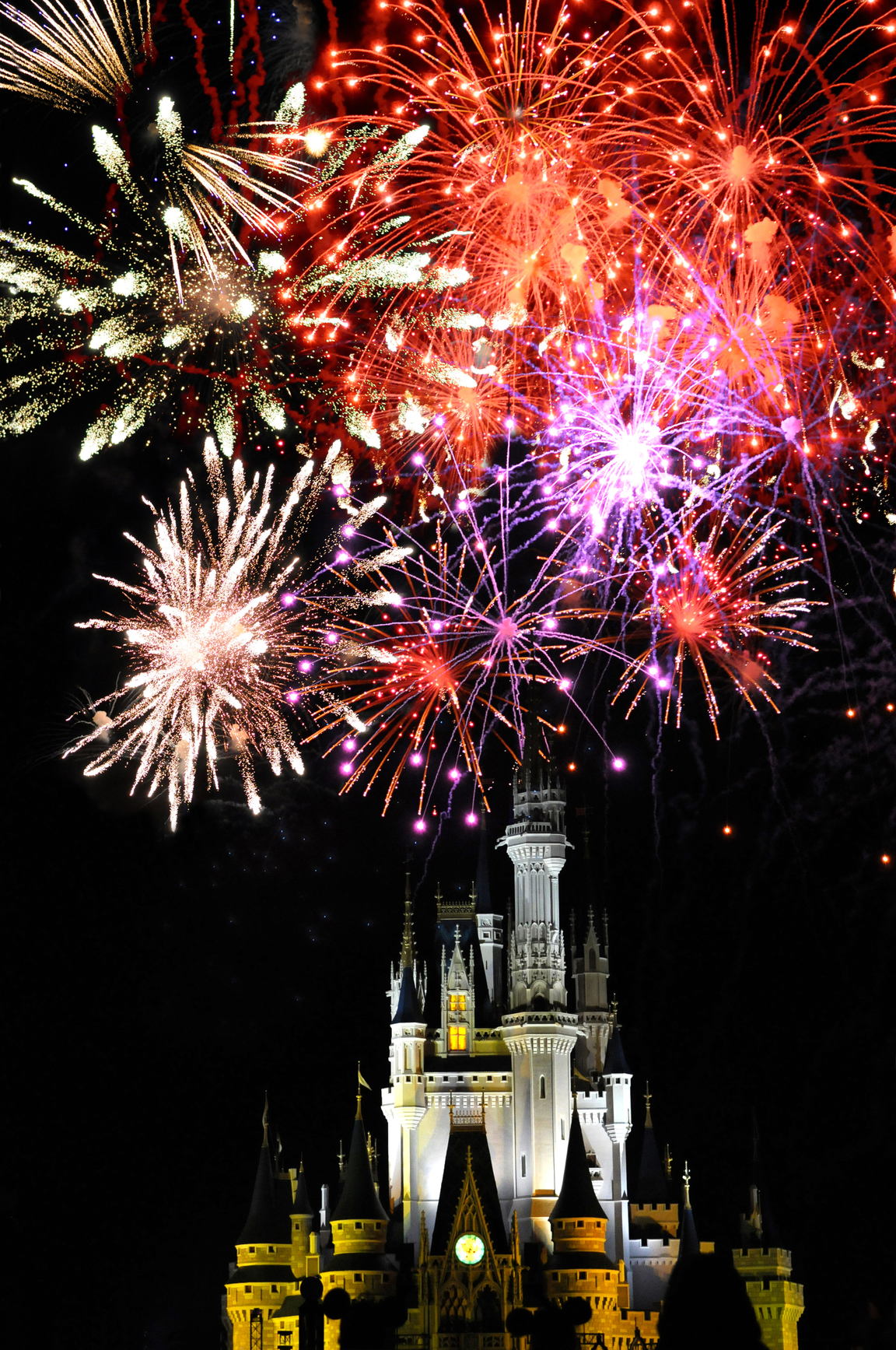 Disney World Magic Kingdom  and Fireworks